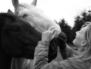 I want my horses to want to be with me