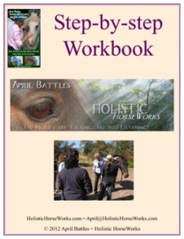 April Battles Workbook