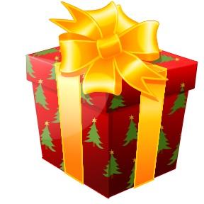 christmas present pic