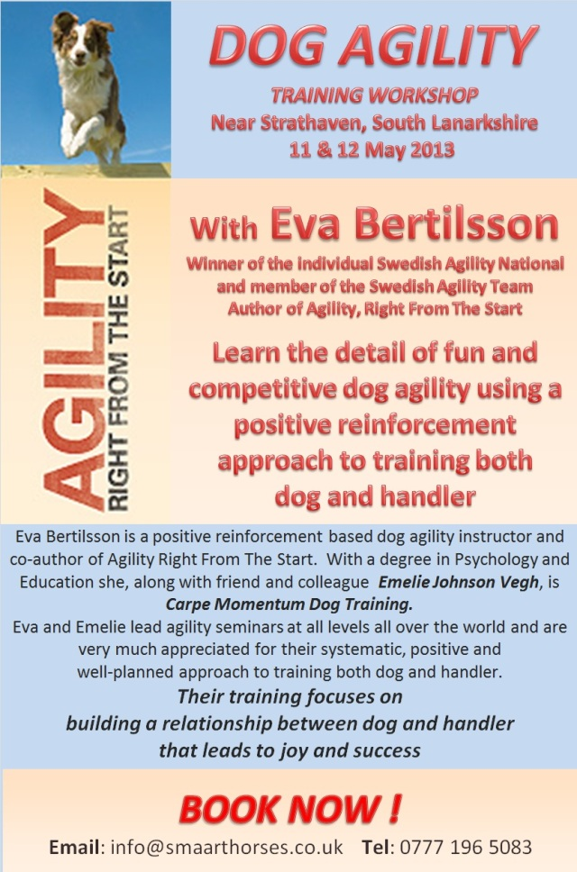 Dog Agility 11 and 12 May 13
